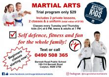 Beginners Trial Program Only $29 Colyton Karate _small